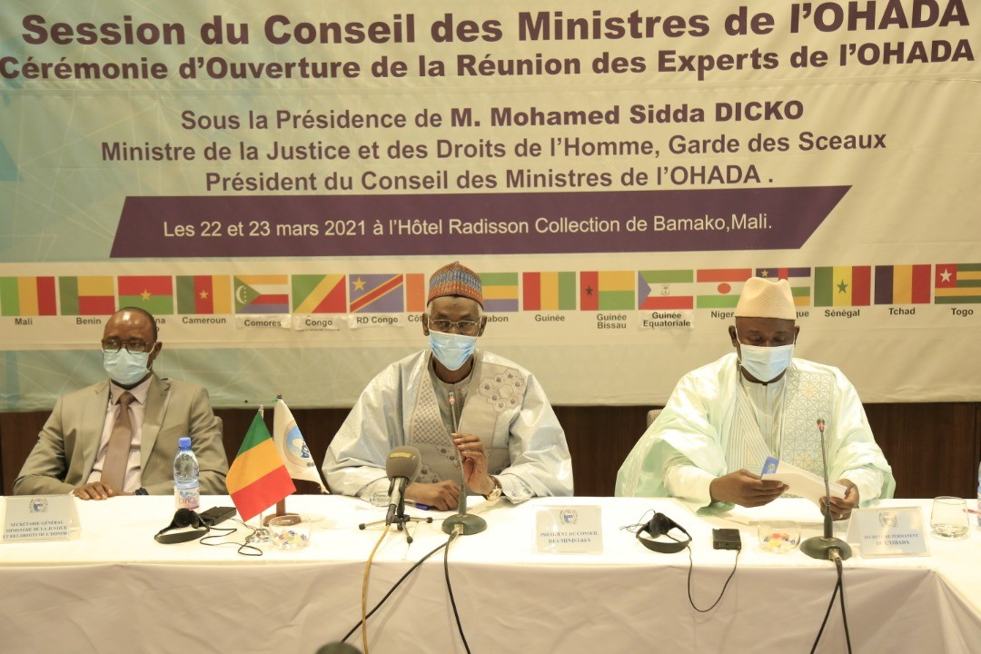 Ouverture de la Réunion du Comité des experts de l'Organisation pour l'Harmonisation en Afrique du Droit des Affaires (OHADA) 22 et 23 mars 2021